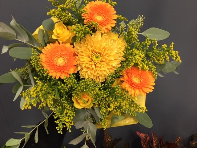 Kimppu Oranssi